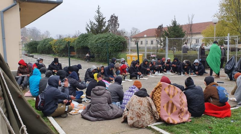 Comunicat: Situația solicitanților de azil din Timișoara